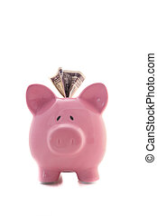 Dollar sticking out of pink piggy bank on white background