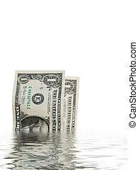 dollarrekeningen, in, water