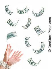 dollars, attaché, mains