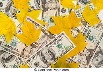 Dollars in autumn maple leaves