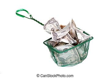 dollars in green net