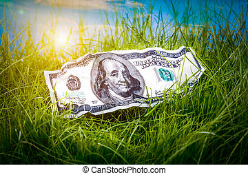 Dollars in the green grass