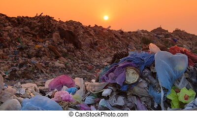 Domestic Garbage in Landfill Tracking Shot