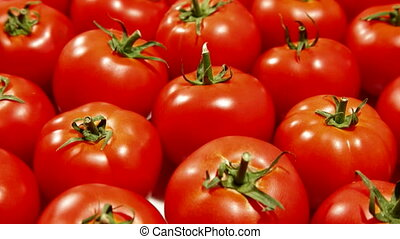 DOLLY: Fresh Red Tomatoes