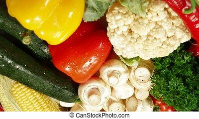 DOLLY: Fresh Vegetables