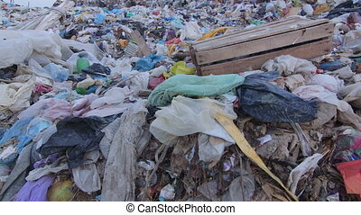 DOLLY: Heaps of garbage in landfill