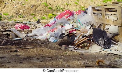 An old partially buried garbage dump. - Dolly shot. An old...