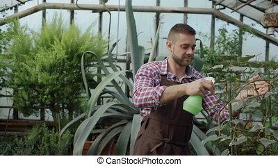Dolly shot of Attractive man gardener in apron watering...