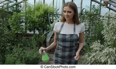 Dolly shot of Attractive woman gardener in apron watering plants and flowers with garden sprayer in greenhouse