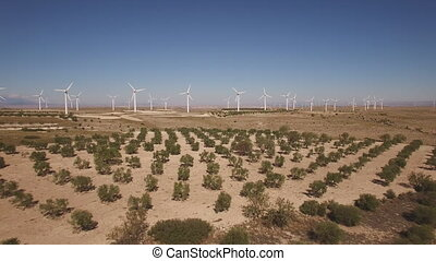 Dolly zoom over running windmill farm and trees - Aerial...