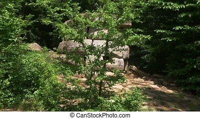 Dolmen in the forest. 4k, slow motion. Steadicam Shot.