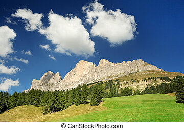 dolomites and green pasture in summer - dolomitic massif and...