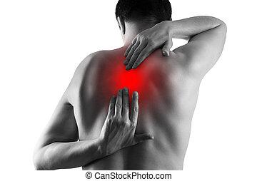 dolor de espalda, dolor, espalda, aislado, sufrimiento, plano de fondo, blanco, hombre