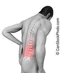 dolor de espalda, ilustración
