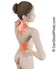 dolor de espalda, teniendo, hembra