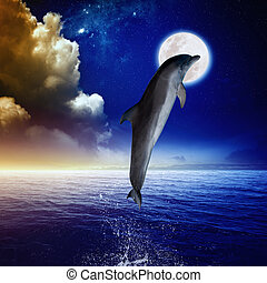 Dolphin and moon - Dolphin jumping, full moon above sea, ...