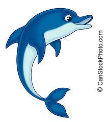 dolphin cartoon illustration for kids.