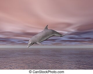 Dolphin - Illustrated dolphin jumping out of the sea