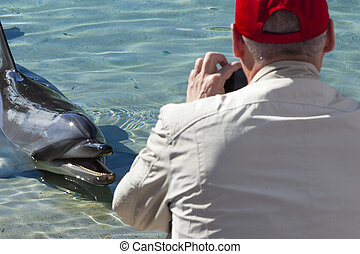 Man photographing dolphin in captivity