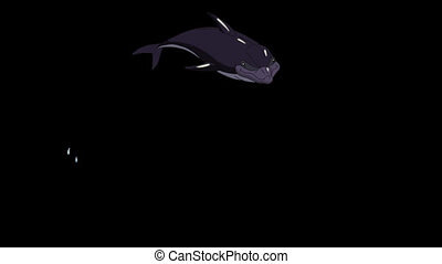 Dolphin Jump Out of the Water. Animated footage with alpha...