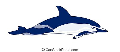 Dolphin on a white background.