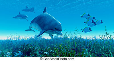 A school of Blue Tango fish beat a hasty retreat as a pod of dolphins show up on the scene.