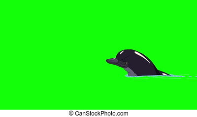 Dolphin Swims in the Water. Animated footage, animal on a...
