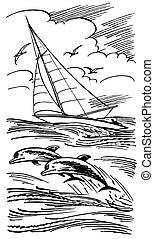 Dolphins and sailboat