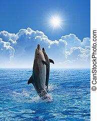 Dolphins jumping - Couple jumping dolphins, blue sea and sky...