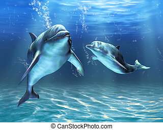 Dolphins - Two dolphins happily swimming in the ocean. ...
