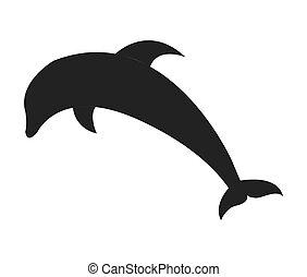 dolphyn cute fish isolated