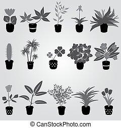 domů, houseplants, a, květiny, do, hrnec, grayscale, eps10