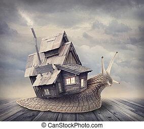 dom, ślimak