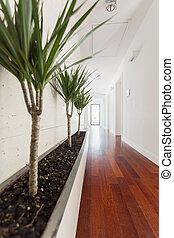 dom, biały, korytarz