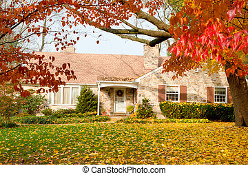 dom, liście, drzewo, filadelfia, żółty, jesień, upadek