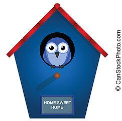 dom, ptak