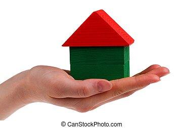dom, ręka., biały, odizolowany, samica