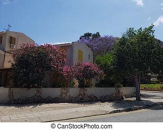 dom, z, niejaki, piękny, rozkwiecony, ogród