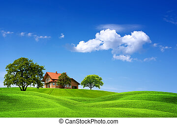 dom, zielony krajobraz