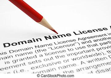 Domain name license