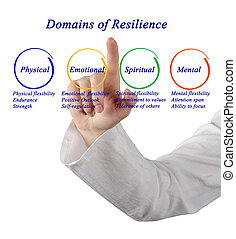 Domains of Resilience