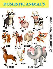 domastic, mapa, animal
