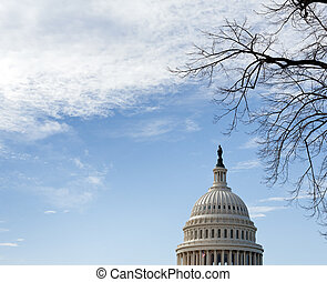 Dome of Capitol Washington DC with sky - Dome of Capitol in...