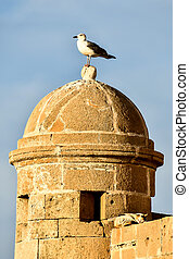 dome of church in jerusalem, photo as background