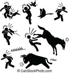 Domestic Animal Attacking Human - A set of human pictogram...