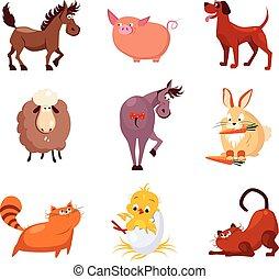 Domestic Animals and Birds Vector Illustrations Flat Design Set.