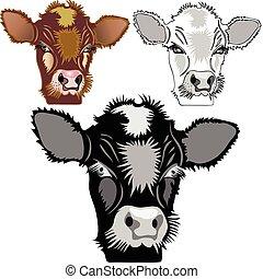 domestic animals - Brown, black, white calf. Domestic...