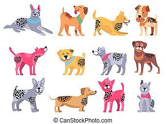Domestic Dogs of Pure Breeds Big Illustrations Set -...