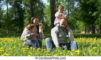Domestic Harmony - Family of four playing on the lawn,...
