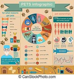 Domestic pets infographic elements, helthcare, vet. Vector illustration